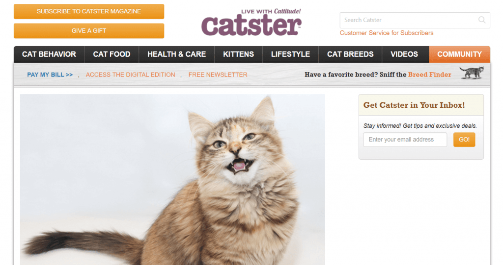 Catster Cat Blog