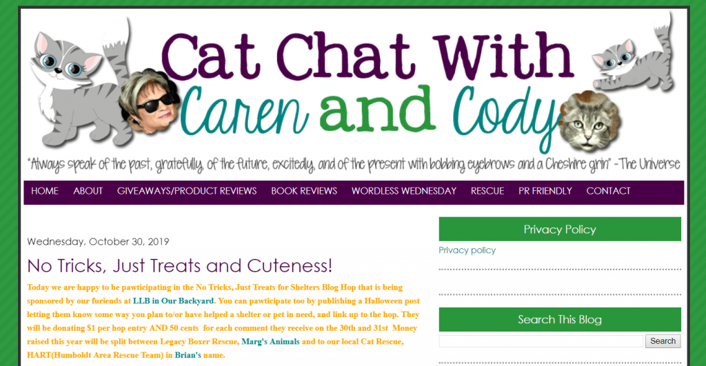 Cat Chat with Caren and Cody homepage