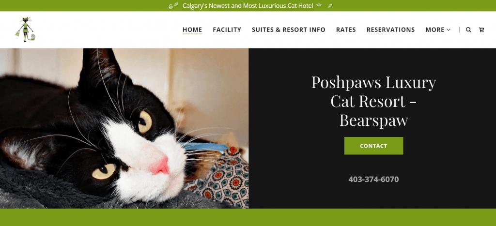 Poshpaws Luxury Cat Resort website