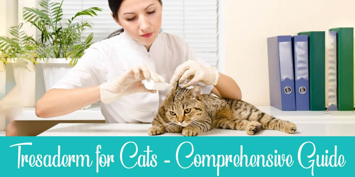 Tresaderm for Cats: Benefits, Safety, And Tips