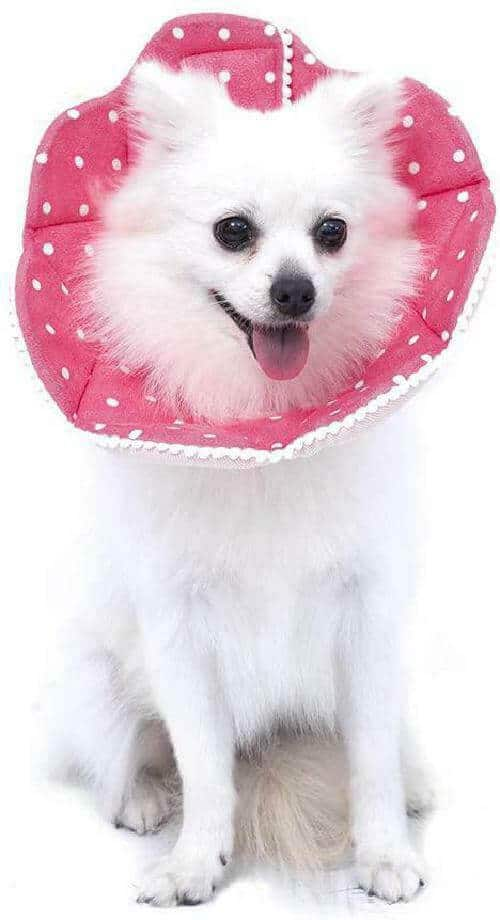 WZ-PET-Adjustable-Cone-Collar