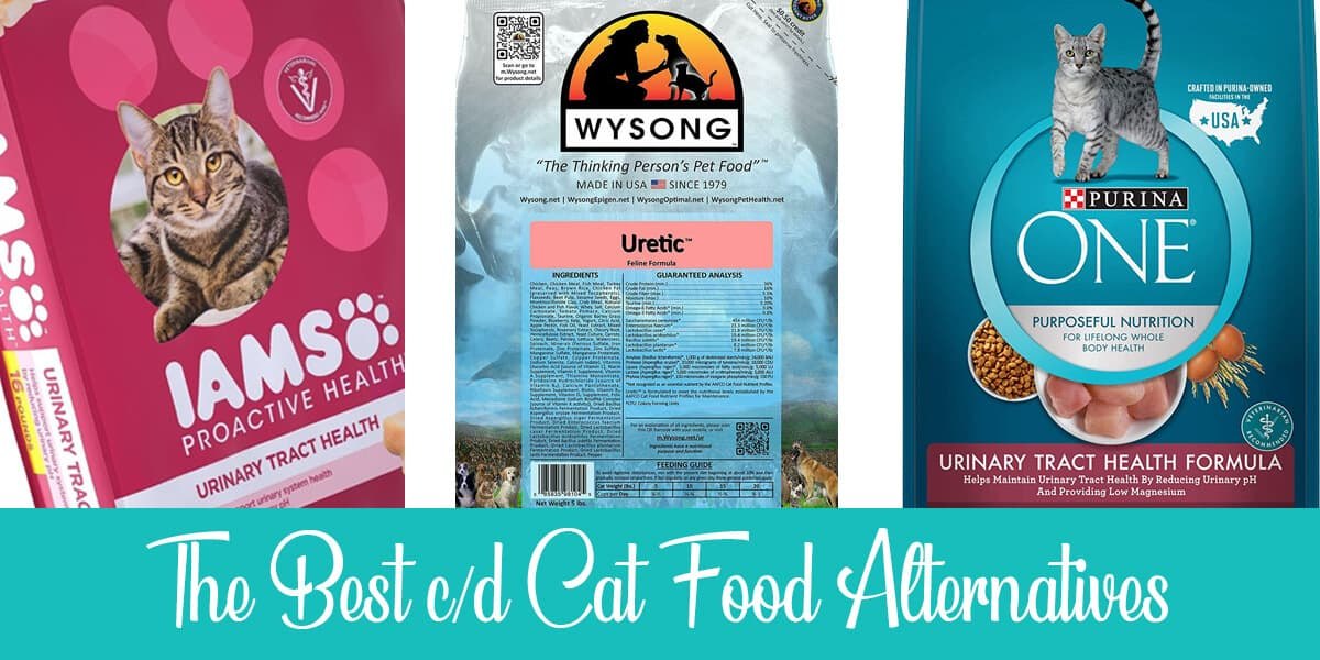 The Best 3 c/d Cat Food Alternatives in 2020 (Reviews)