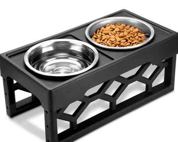 AVERYDAY-Raised-Dog-Bowls-Elevated-–-Best-Overall