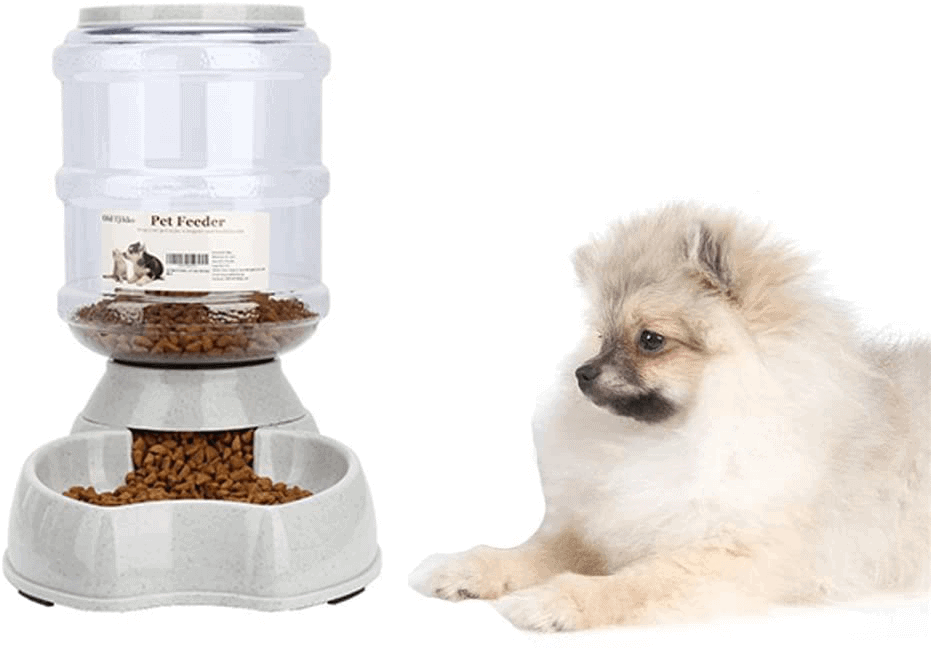 Blessed Family Automatic Cat Feeder