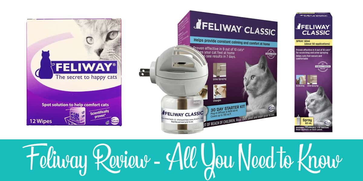 Full Feliway Review: Scam or Legit? (2020)