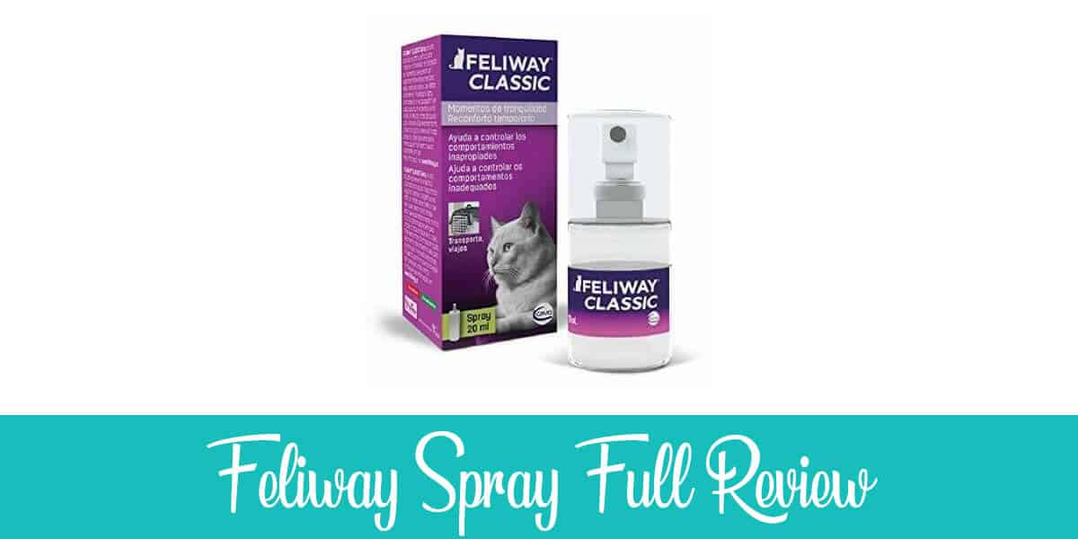 Feliway Spray Review