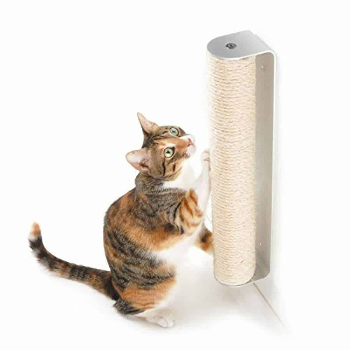 4CLAWS-Wall-Mounted-Scratching-Post-–-Best-for-Kittens