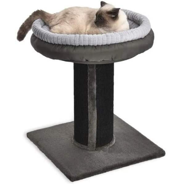 AmazonBasics Cat Scratching Post
