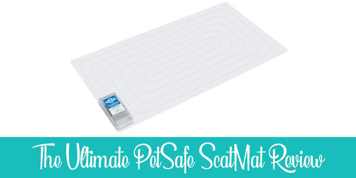 PetSafe ScatMat Review – Detailed Experience (2020)