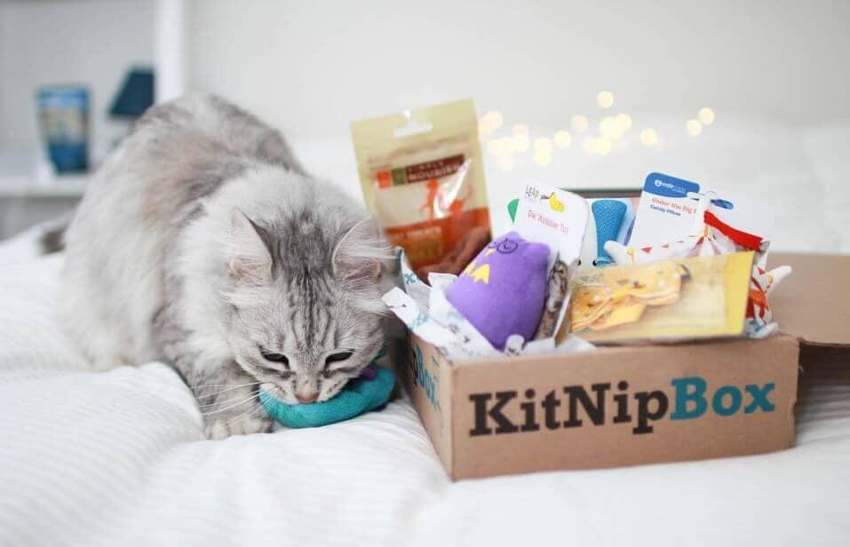 KitNipBox