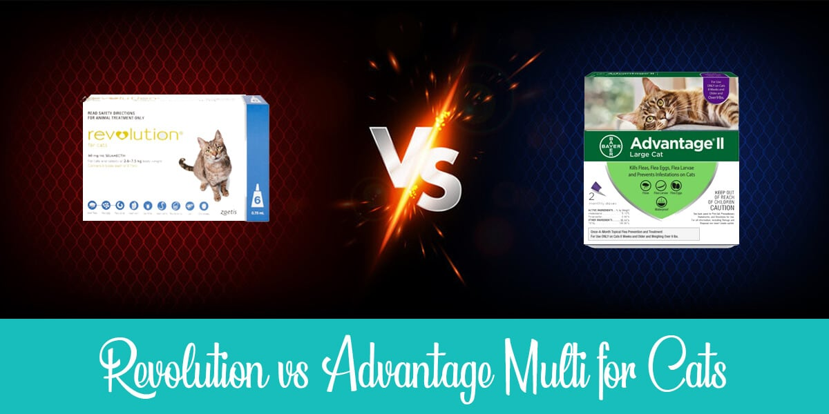 Revolution vs Advantage Multi