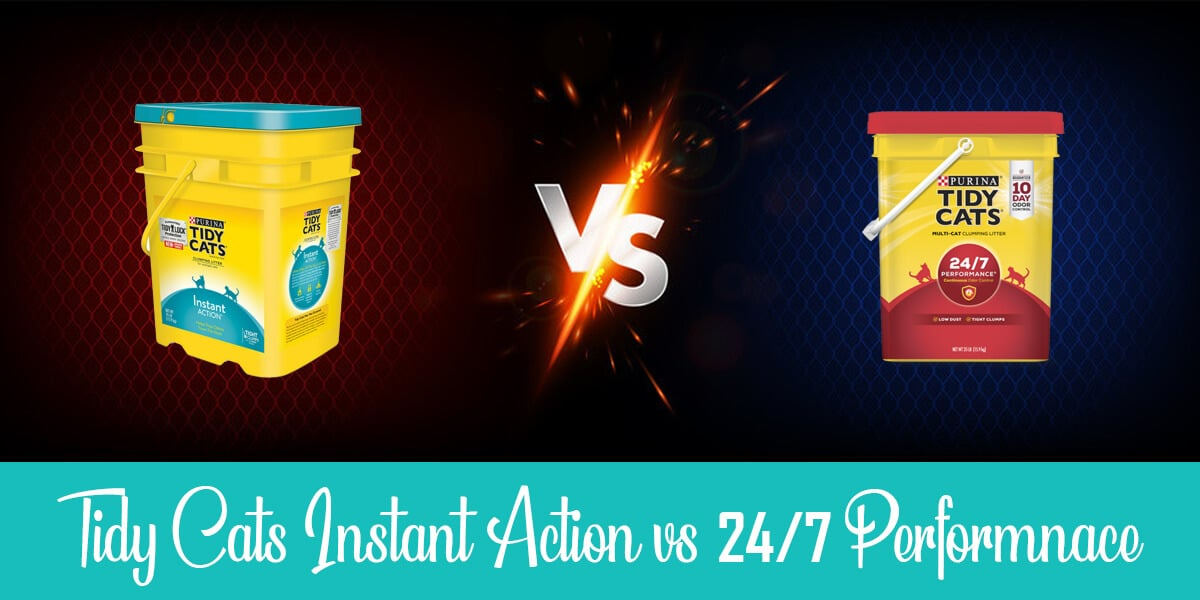 Tidy Cats Instant Action vs 24/7: Which Litter is Better?