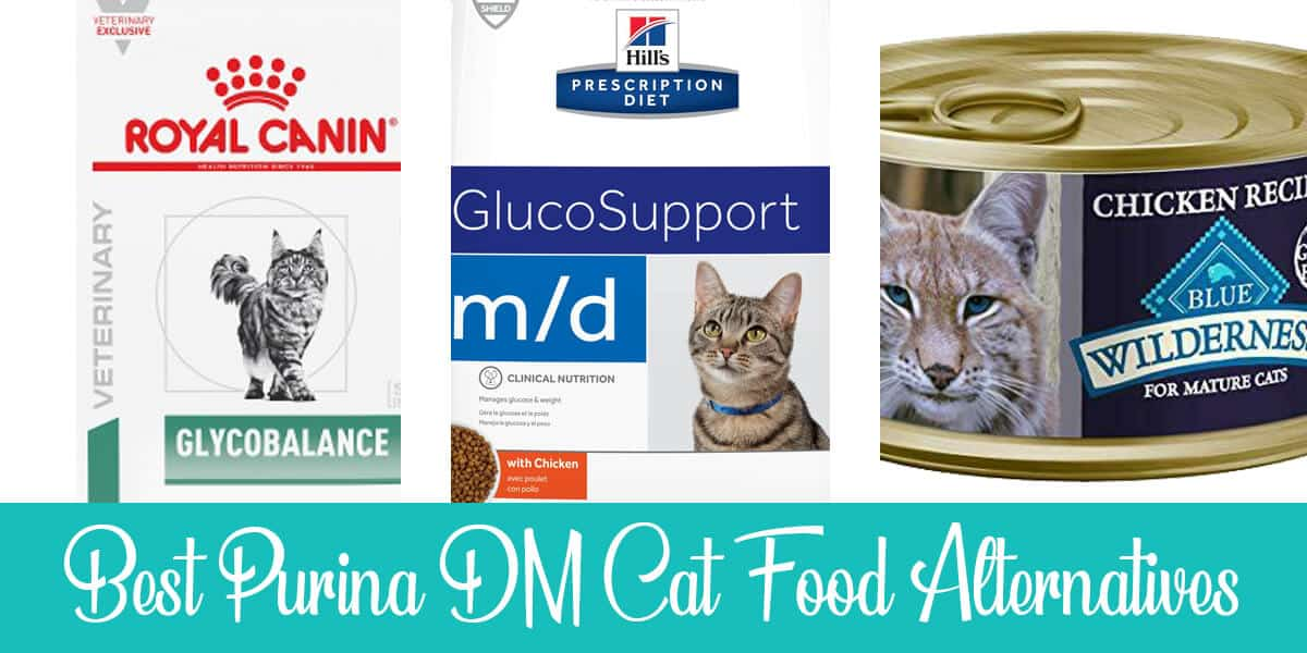 Purina DM Cat Food Alternatives