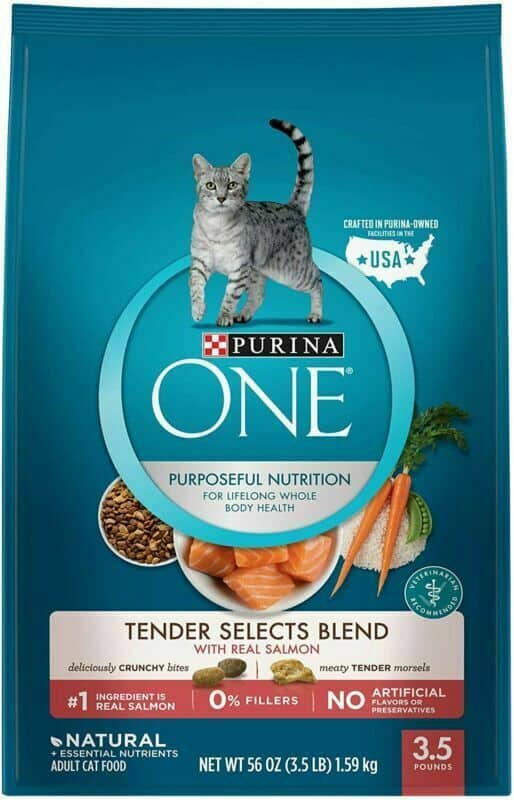Purina-ONE-Tender-Selects-Blend-Dry-Cat-Food
