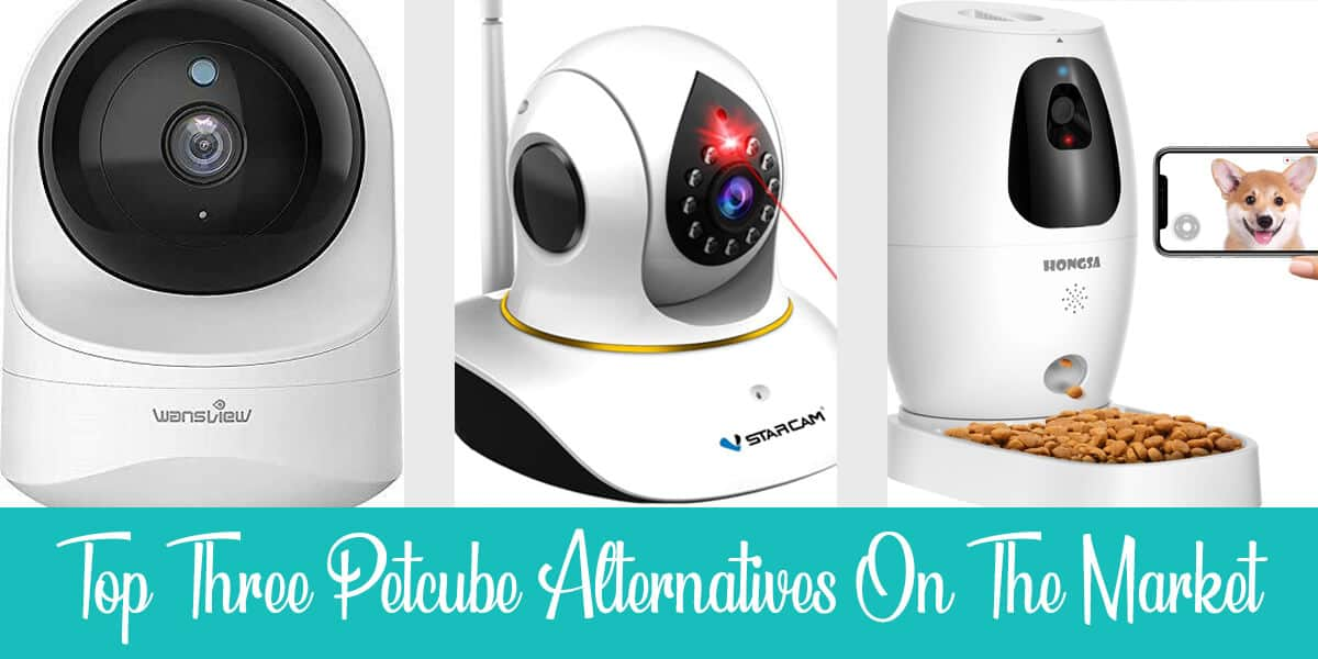The Top 3 Petcube Alternatives in 2021
